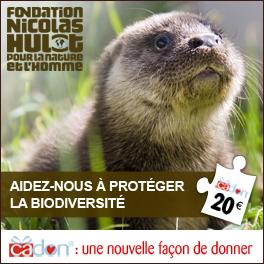 Cadon_Biodiversite-1