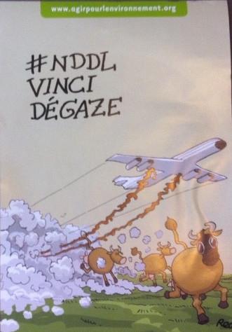affiche-nddl - copie